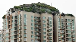 πράσινες στέγες